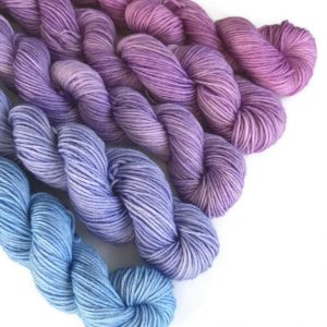 Delphiniums Mini Skein Yarn Set